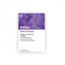 Eviol Brain Function Πνευματική Συγκέντρωση &...