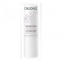 Caudalie Lip Conditioner, Προστασία των Χειλιών 4,5g